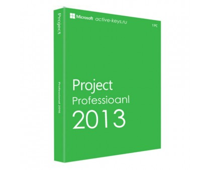 Microsoft Project 2013 - Professional