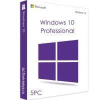 Windows 10 Professional (5PC)